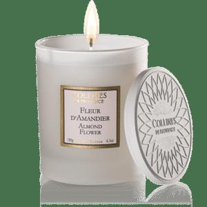 Bougie parfumée fleur d'amandier